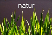 200x133_photogal-natur-1
