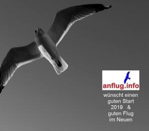 anfluginfo - 2019 -_-