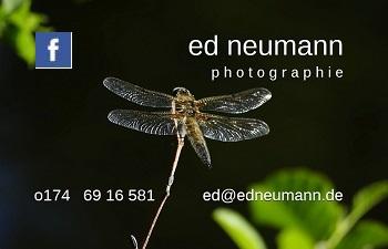 _ ed neumann _ photographie _ fb
