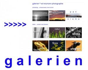 ed-photo-gal-link