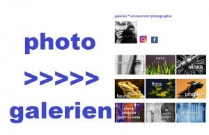 photo-gal-_-ed