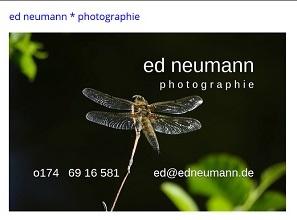 seite - ed neumann photographie x